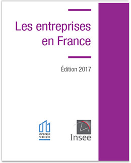 Insee Entreprises 2017